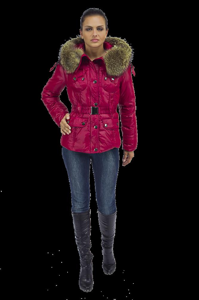 Зимняя Куртка Женская Купить  Недорого