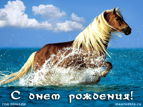 с днем рождения с лошадью картинка