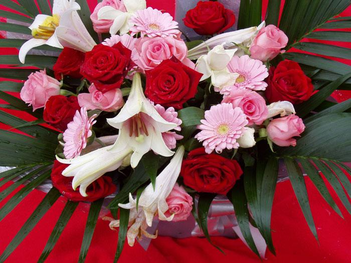 Фото цветы день учителя
