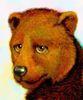 Grigor