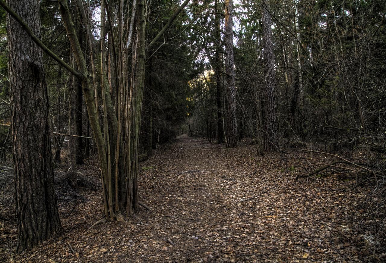 Чем дальше в лес, тем своя рубашка ближе к телу...