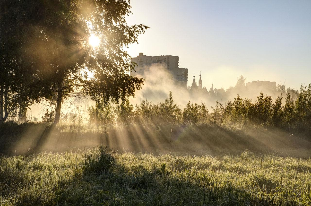 Про Солнце, росу и туман