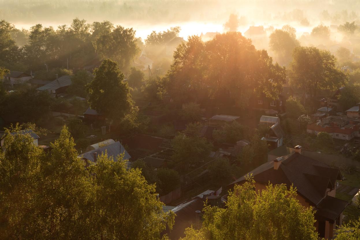 Утро в Новой деревне