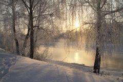 Холодное золото зимнего солнца