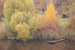 Осенний денек