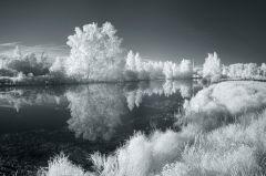 Зеркальная река, пушистые берега