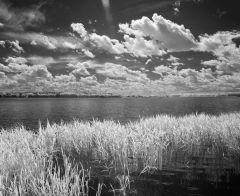 Трава, вода и облака