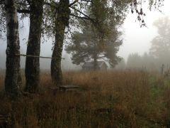 Туманное утро на охотничьей заимке.