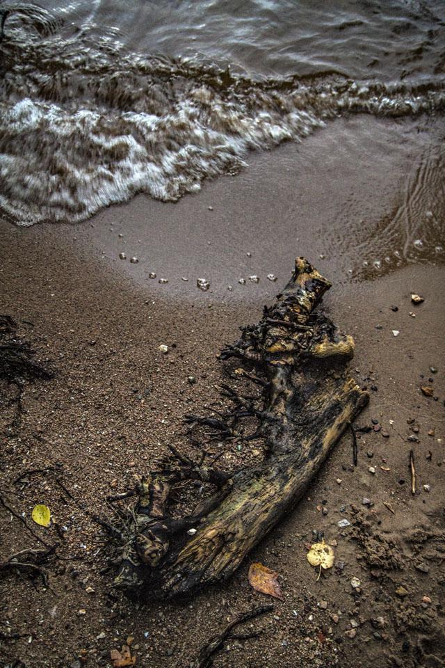 Что приносят волны
