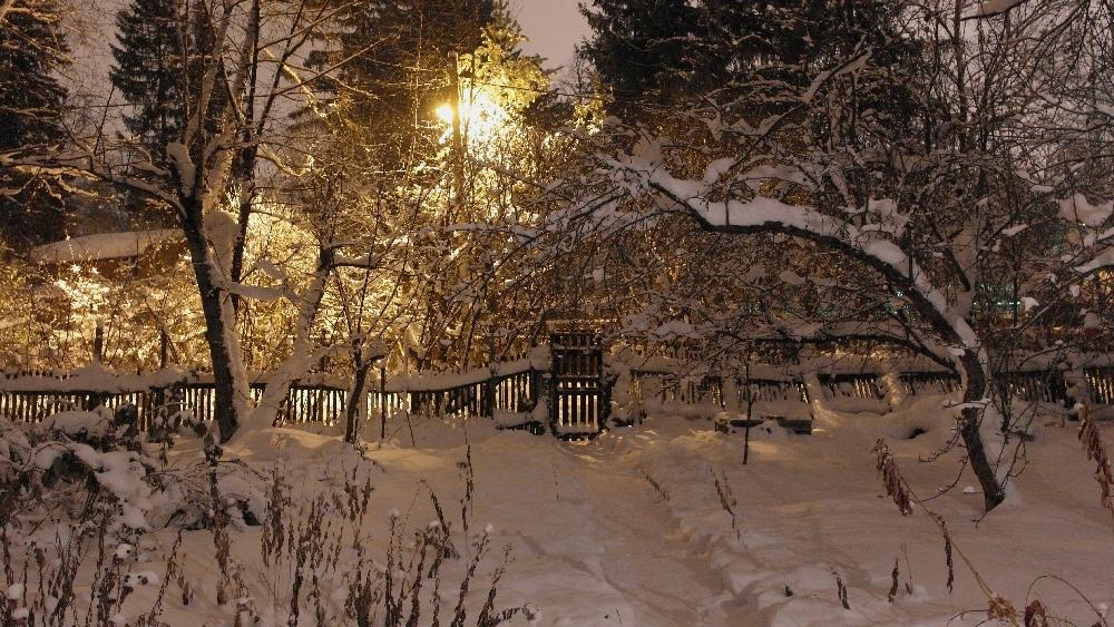 Зимний вечер в Заветах
