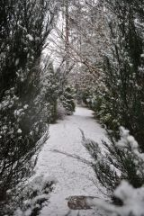 Апрельский сад