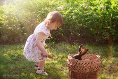 Аня и зайцы