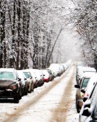 Зимнее придорожье