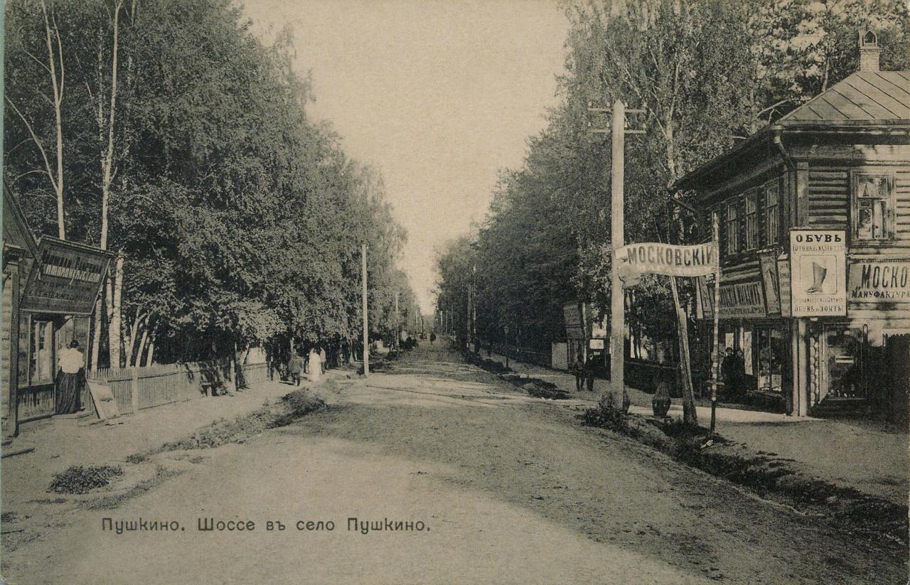 Пушкинское шоссе, магазины.
