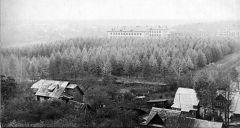 1971. Октябрь. ВНИИЛМ и его лес.