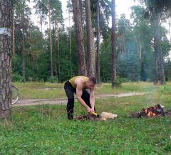 Типичный сосновый пейзаж в Пушкино до 1950-х годов