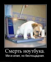 post-17107-0-41801200-1398360991_thumb.jpg