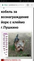 post-18113-0-86649300-1523346608_thumb.jpg