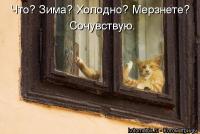post-282-0-82511700-1380539360_thumb.jpg