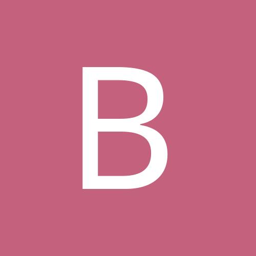 barsik_belik2