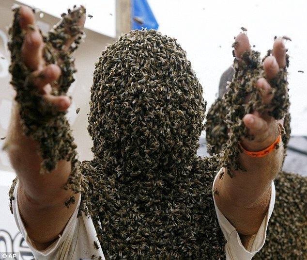 bees covered on body weired-09.jpg