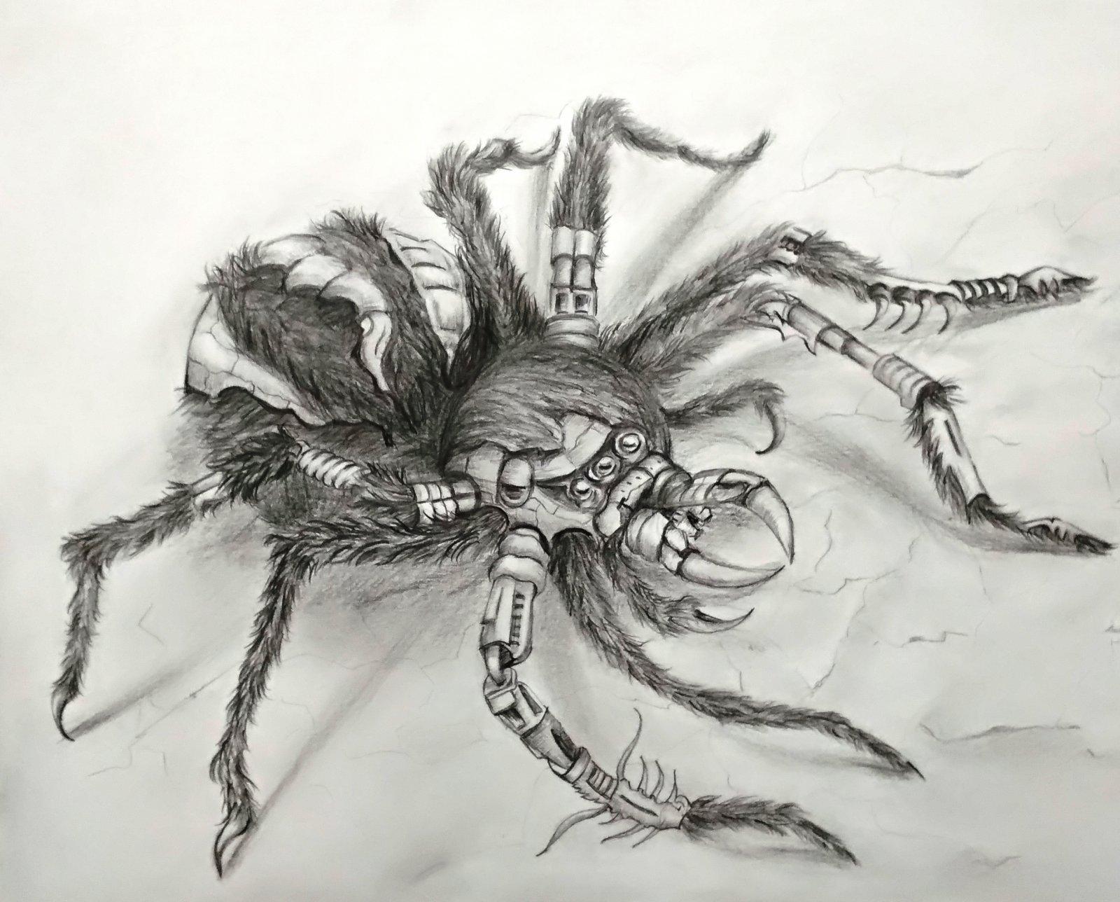 Кибер-паук