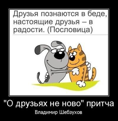 310579160_.jpg.b64db61265624f2b6636f9d410bd2757.jpg