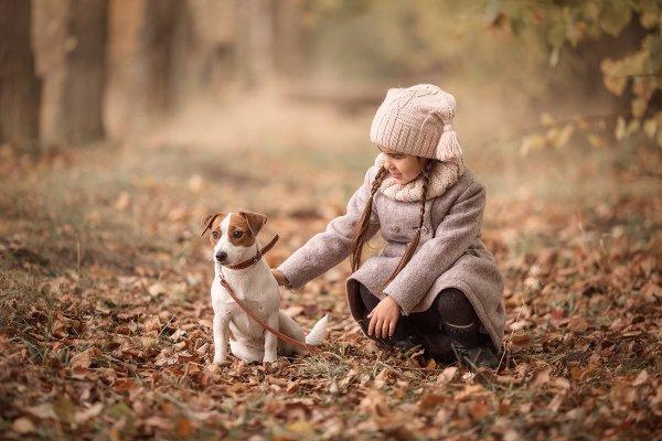 Осень в Новой деревне :)