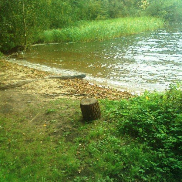 У затопленного села Курово.
