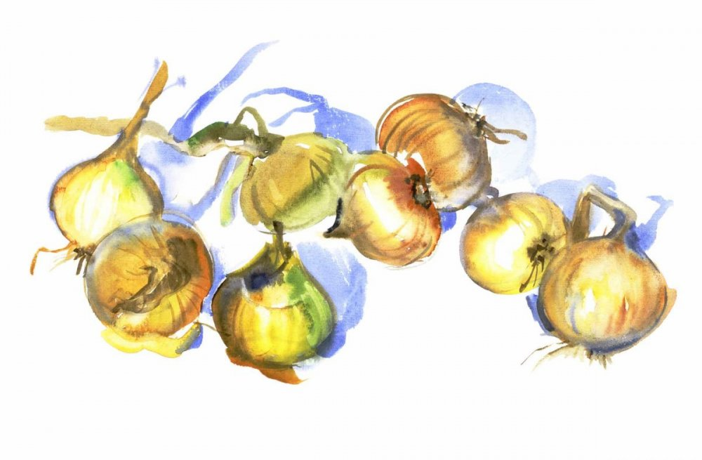 2006-onion.jpg