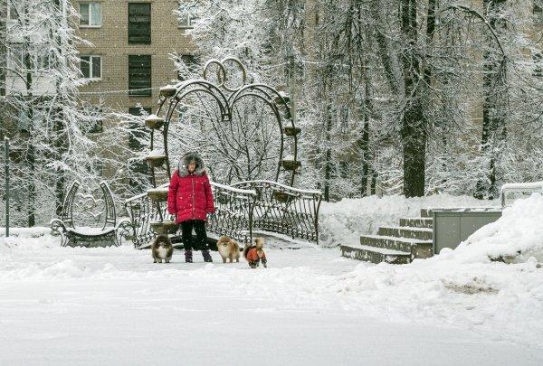Снежный променад