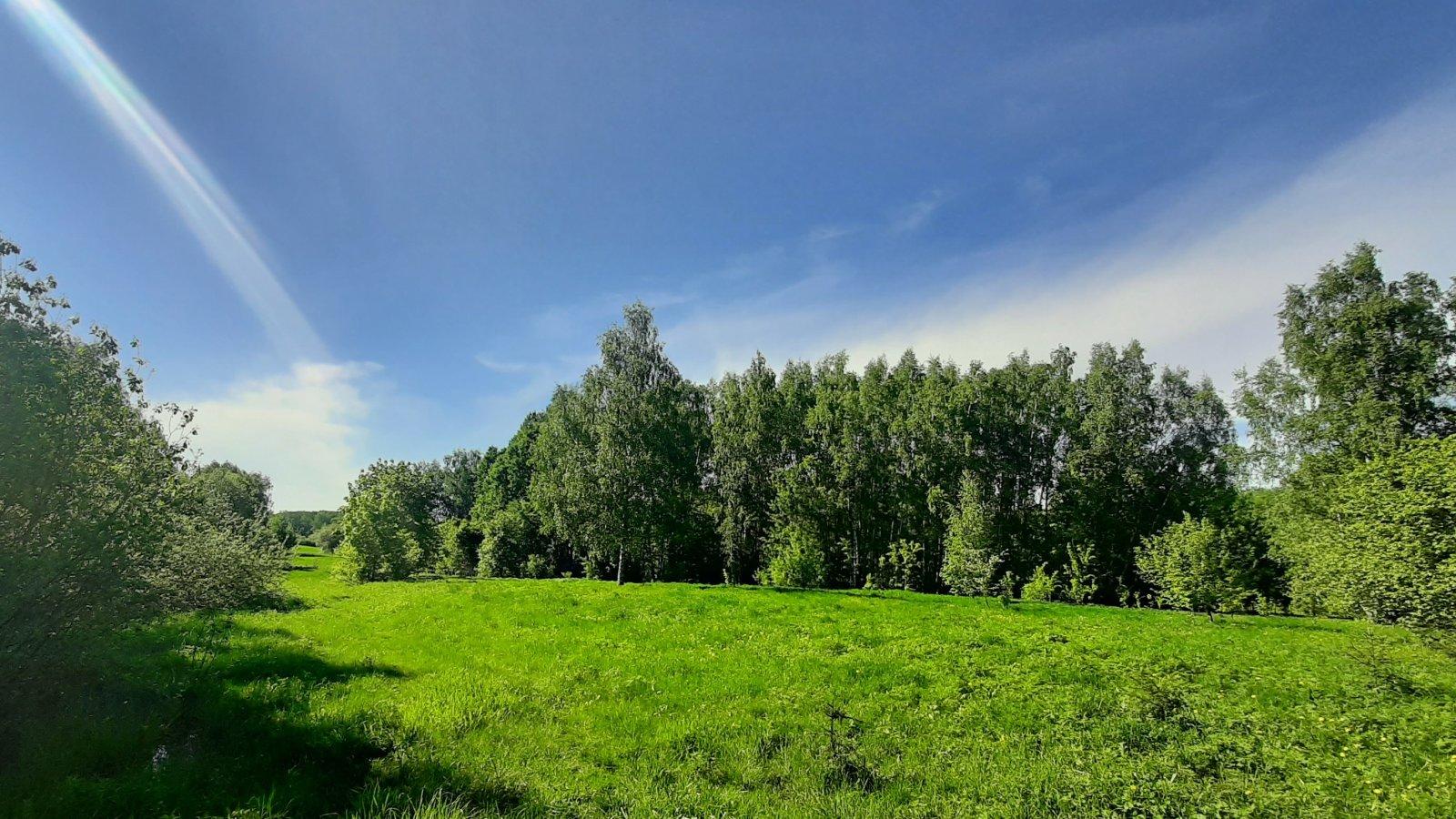 Лучистая поляна