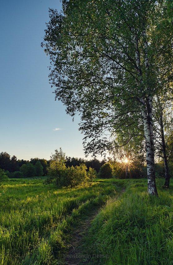 Пушкинский закат