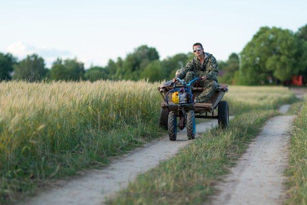 Местные байкеры )