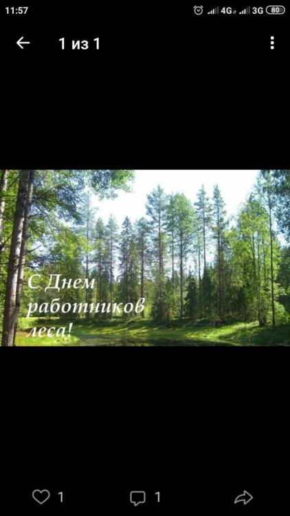 Screenshot_2019-09-15-11-57-13-157_com.vkontakte.android.png