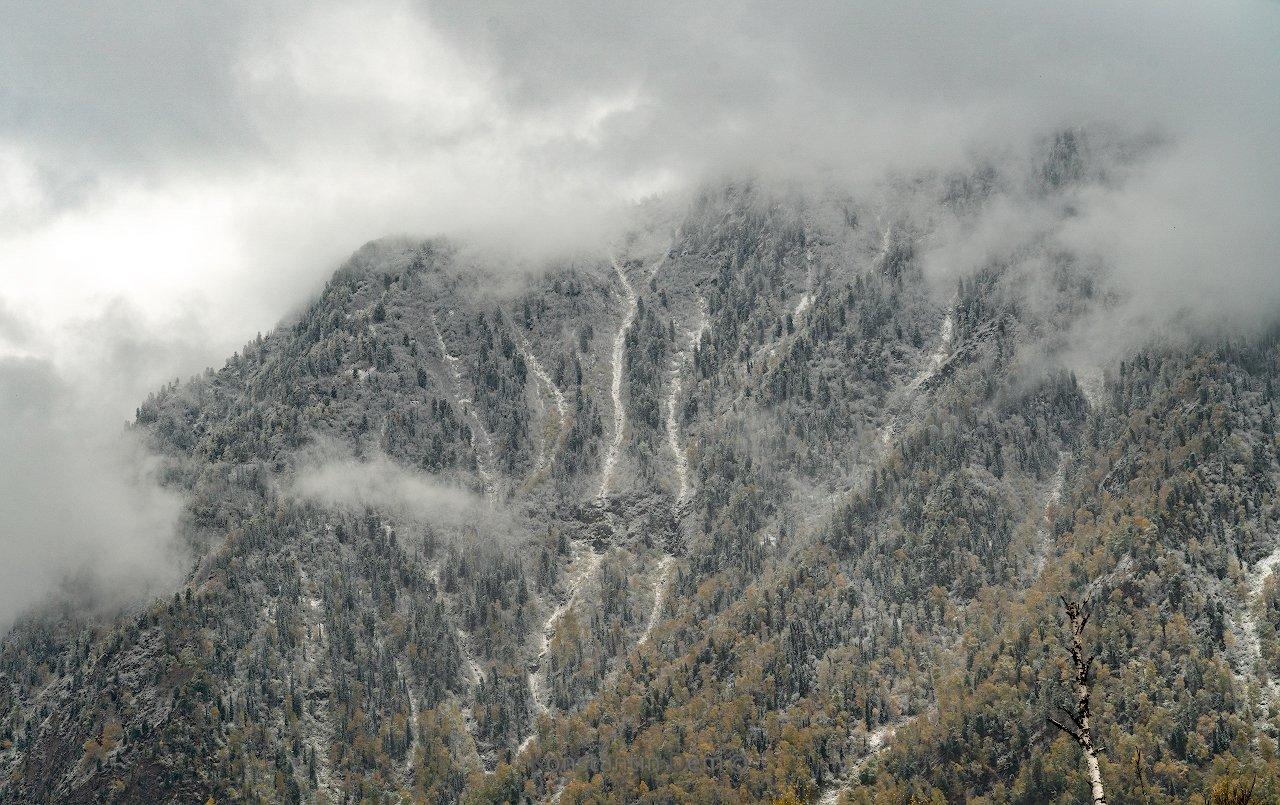 Первый снег Челушмана