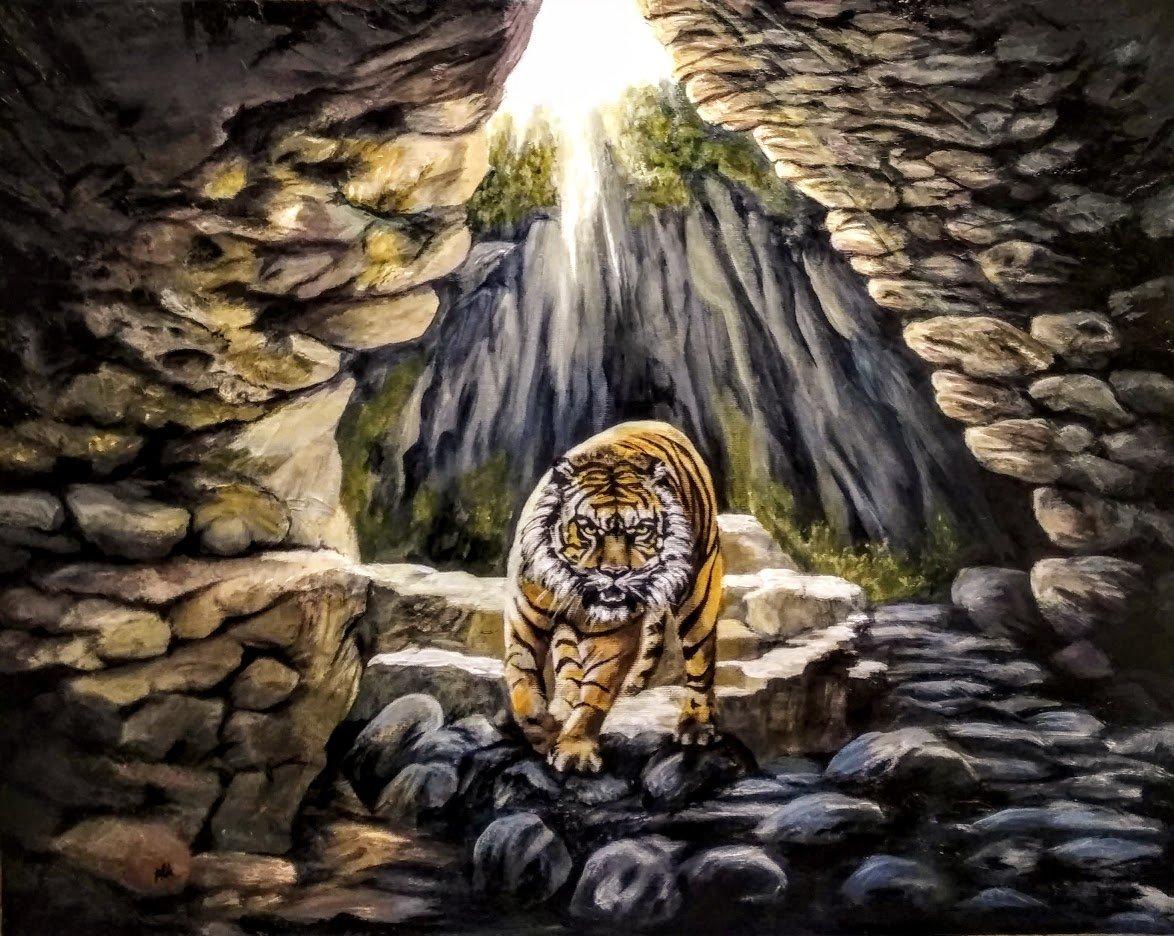 Тигр и камни