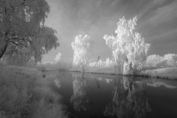 Утром на речке