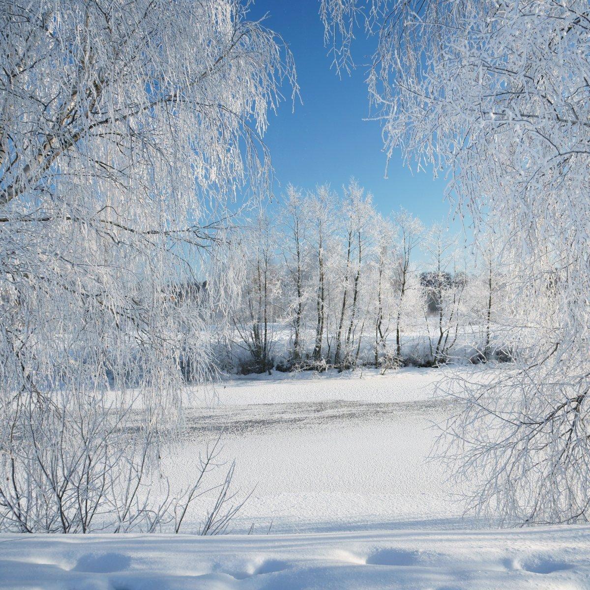 Морозно 2