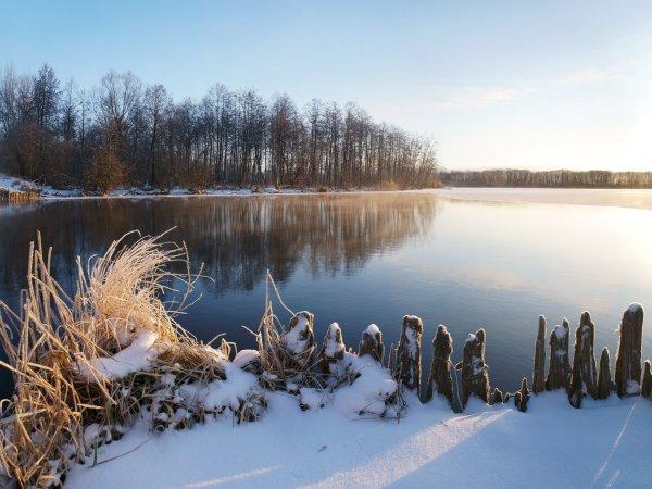 Кусочек зимы из Шатуры