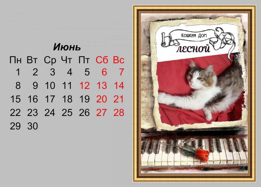 календарь на июнь.jpg