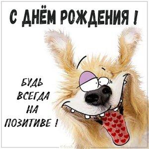 kartinka-s-dnem-rozhdeniya-s-sobachkoj-1.jpg