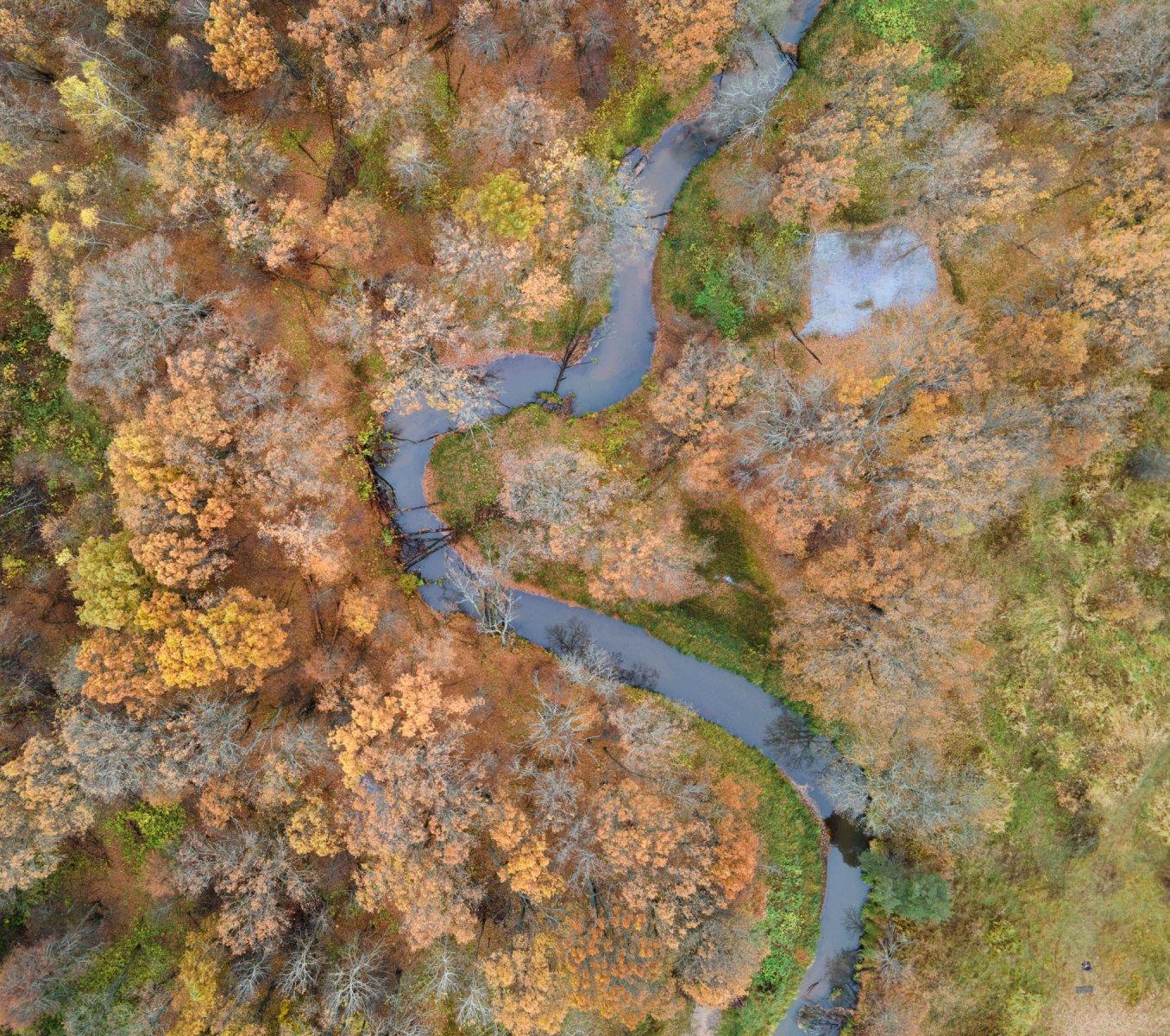 Река Вольга с высоты