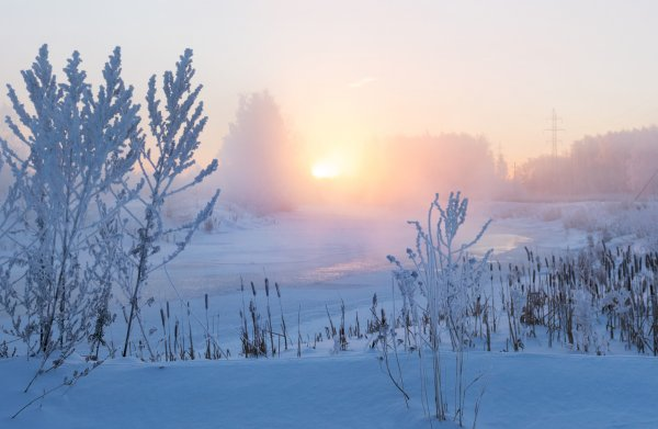 В зимнюю пору