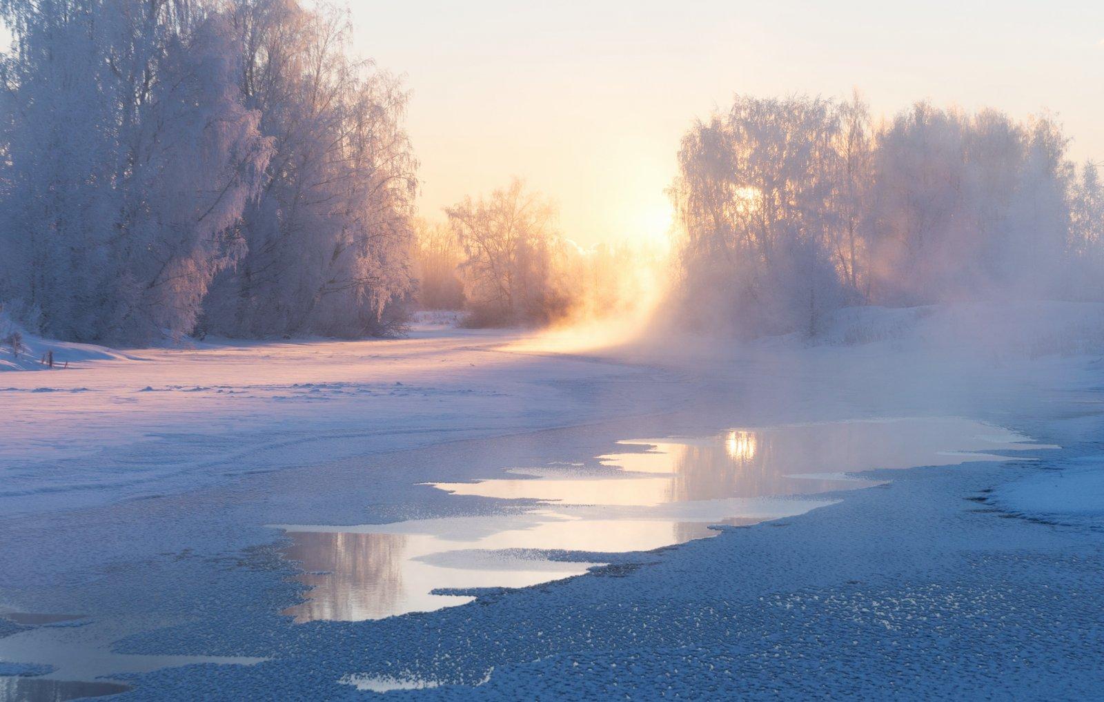 В холодную пору