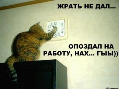 post-10-1128000881.jpg
