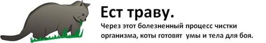 post-10-1226589576.jpg