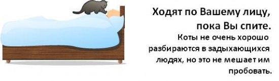 post-10-1226589672.jpg