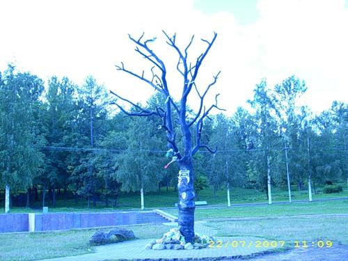post-11-1270289001.jpg
