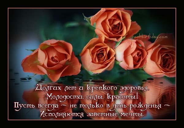 post-169-1323642387.jpg